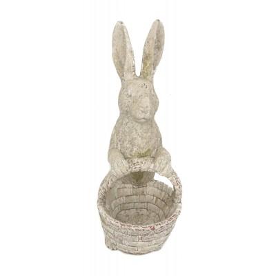 حوض ارنب سله