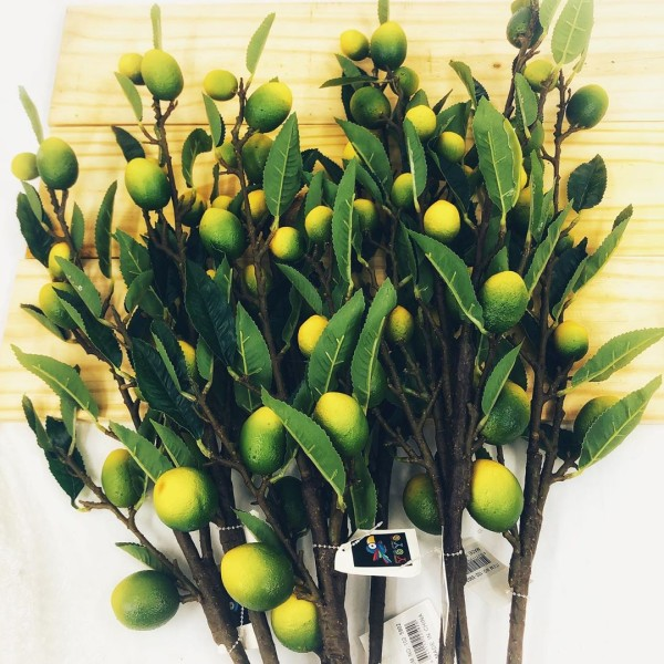 أغصان الليمون