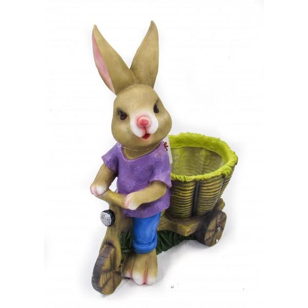 ارنب مع صندوق