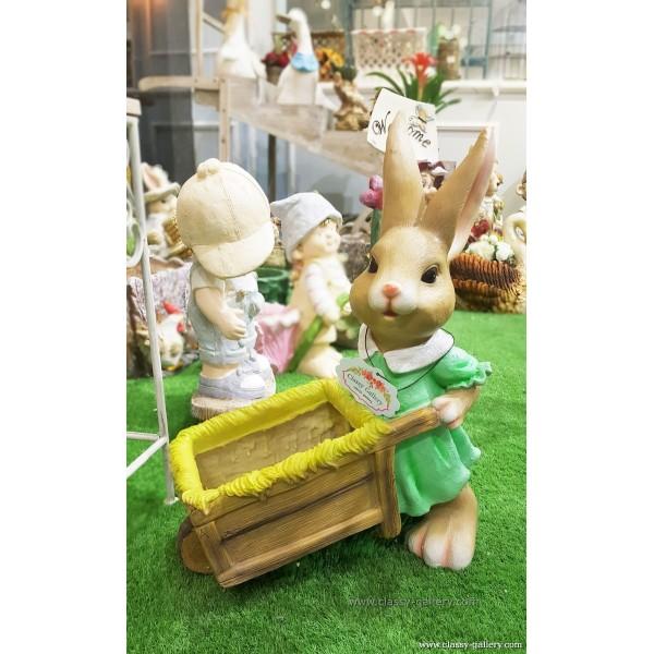 حوضة ارنب