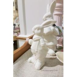 تحفة ارنب ابيض