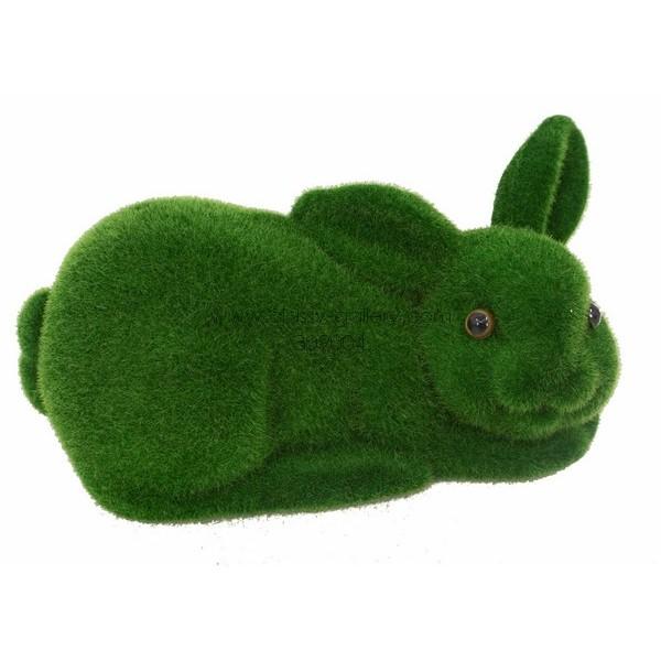ارنب عشبي