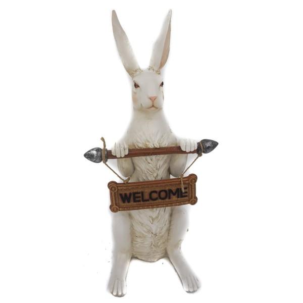 أرنب يحمل كلمة Welcome