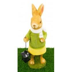ارنب ممسك بفانوس