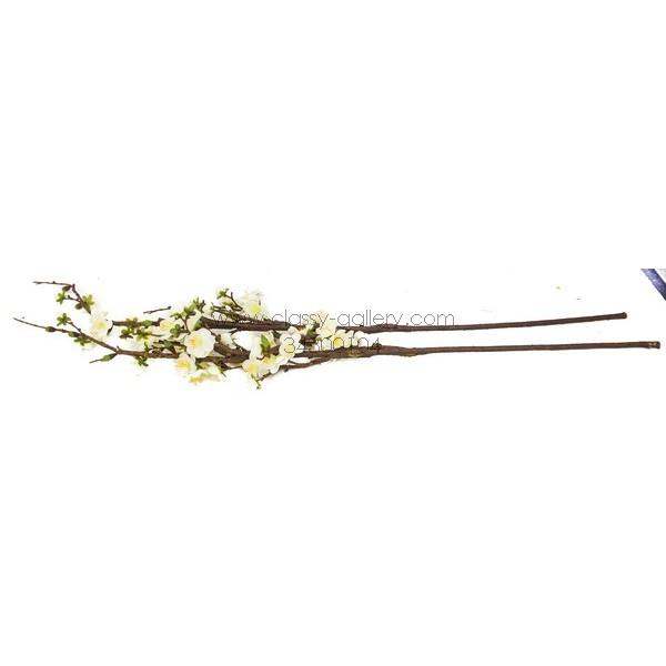 اغصان الورد الربيعية
