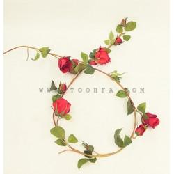 أغصان الورد